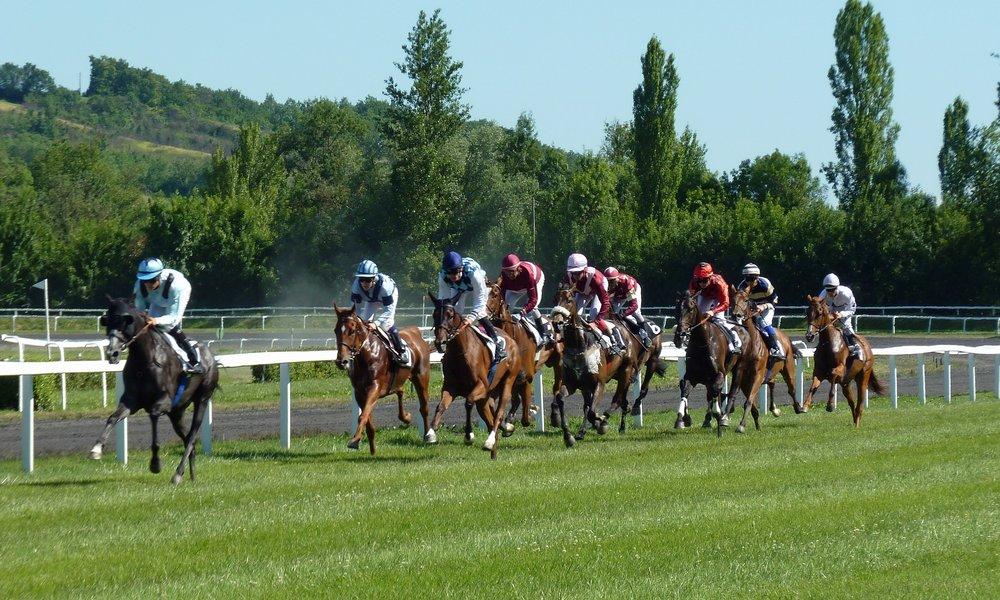 Horse racing 1000×600